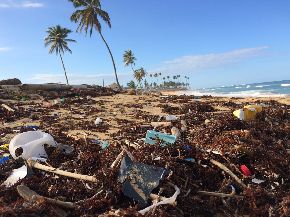 The New Frontier: Plastic Pollution in the Ocean
